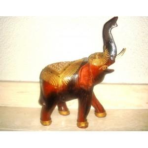 Sloník orientálny